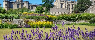 Weekend city break oxford for singles & solos